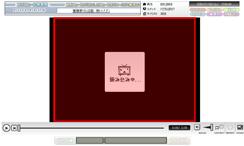 デフォルトプレーヤーの拡大機能(クリックすると原寸大で表示されます。)